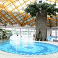 Terme Ilid¾a - a legnagyobb termálvízű fürdő