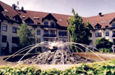 Rubin Wellness & Conference Hotel **** -  a budai zöldövezetben!