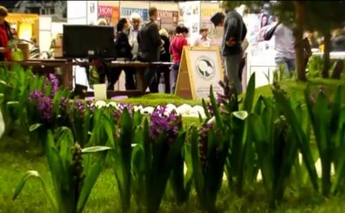 Három napig tartó kertészeti kiállítást rendeznek a fővárosban