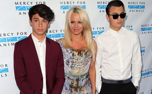 Pamela Anderson fia modell lett