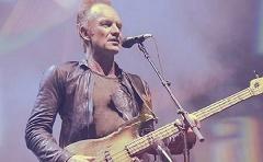 Stinget a halott David Bowie inspirálta