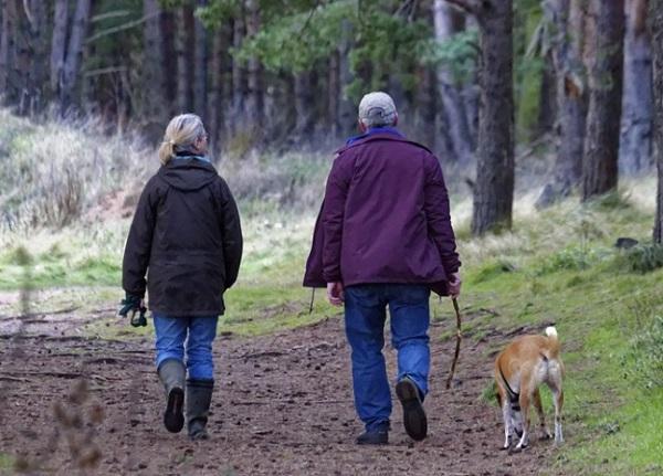 A kutyasétáltatástól a gazdik is jobban érzik magukat