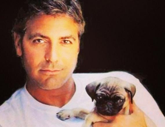 George Clooney már nemcsak kiskutyát babusgat - élvezi az apaságot